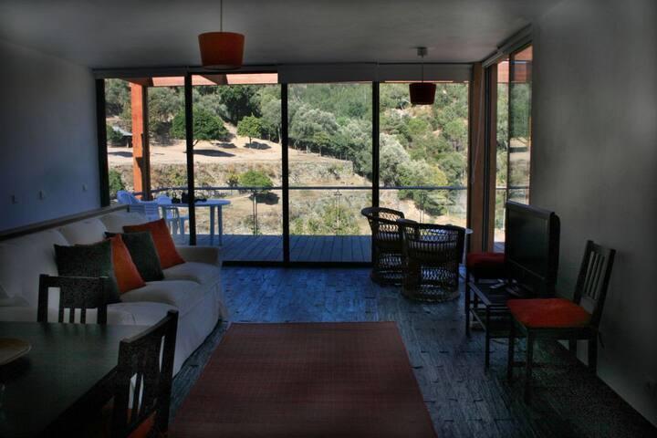 Luxury House in Douro's past Pool Jakuzzi&Massage
