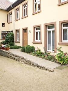 Haus im Weindorf - Albig - 一軒家