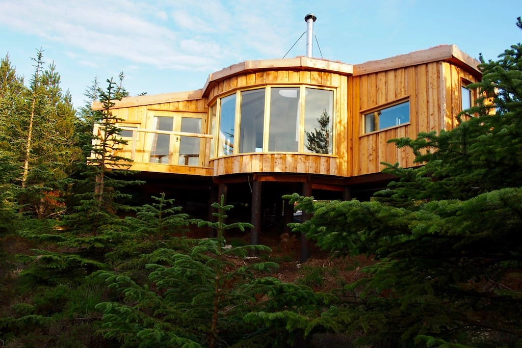 Larch clad tree house nestled in the forest