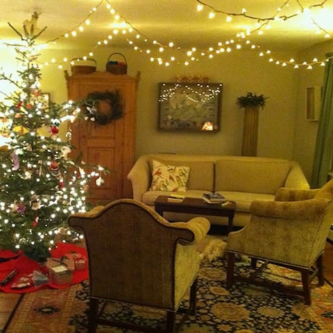 Holiday cheer in the living room.