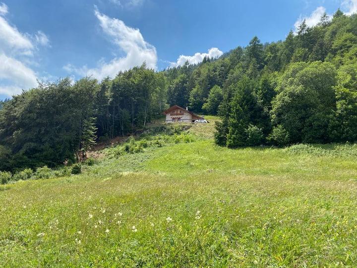 Bellisima Baita di montagna immersa nella natura
