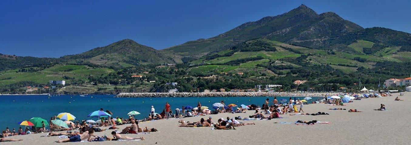 Villa Margarita, à 5 min. à pied de la mer - Argelès-sur-Mer - Villa