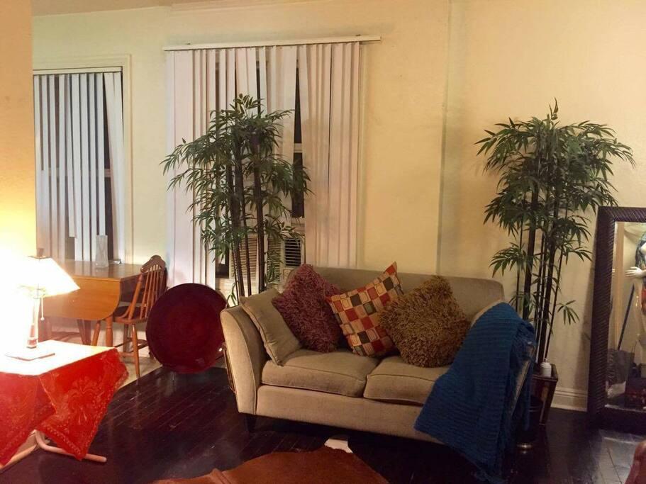 cozy urban safari theme home in koreatown wohnungen zur miete in los angeles kalifornien. Black Bedroom Furniture Sets. Home Design Ideas