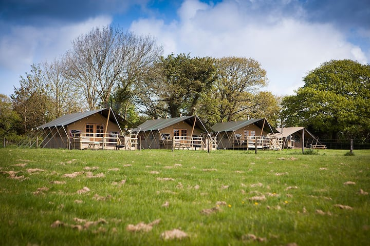 Primrose Farm, Glamping With hot Tub - Bluebell