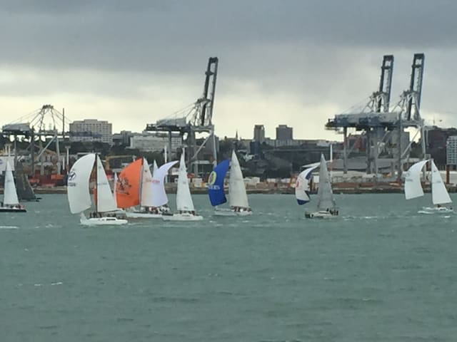 Waterfront Devonport 2 min from Ferry to City - Auckland - Apartment