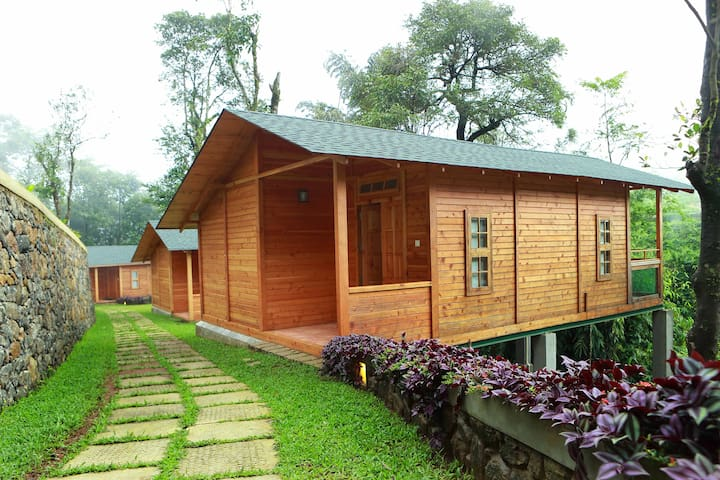 Wooden Chalets at Misty Mountain Plantation Resort - Kuttikkanam - Chalet