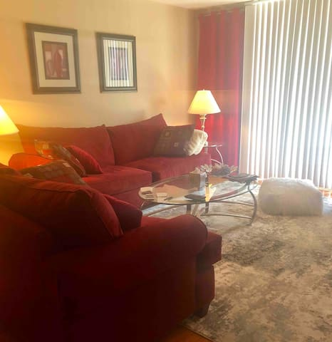 Luxury, sunny, spacious right in DT Tampa