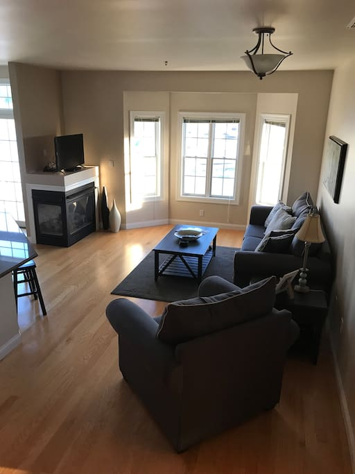 Family room with queen size sofa sleeper. Elegant gas fireplace. Flat screen tv.