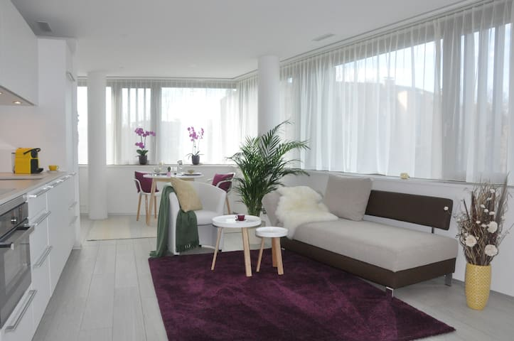 Just 5 walking min from lake of Zug - Zug - Apto. en complejo residencial
