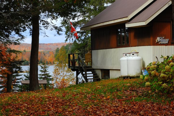 Oxtongue Lake Islandview Cottage