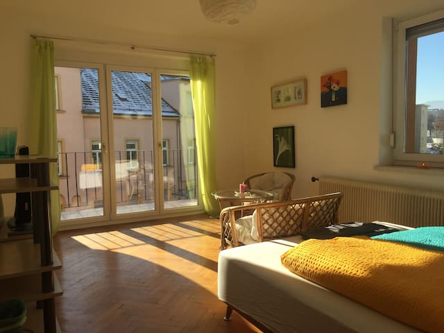 friendly, sunny, cosy - room nearby@Heart of Graz - Graz - Byt