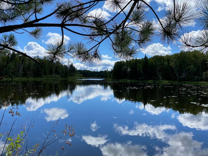 Tranquility = private 100 acre forest n small lake