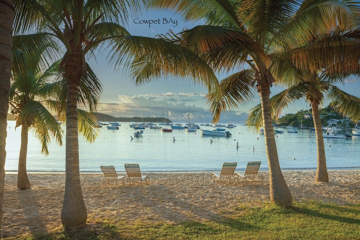 NEW! Charming Beachfront Condo on Cowpet Bay!