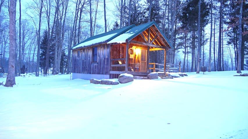 Bear Necessities @ Deep Creek Lake