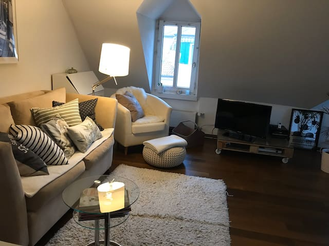 Cosy place with roof terrace in great location
