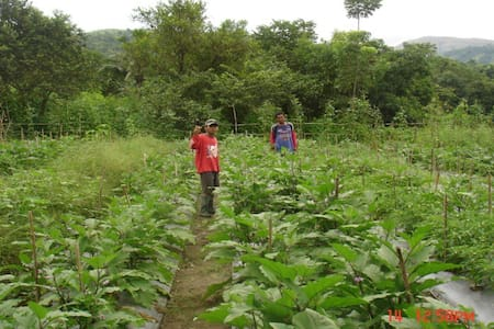 Father's Best Integrated Organic Farm