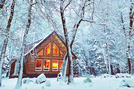 Cozy Log Cabin on 3 acres by Lassen National Park