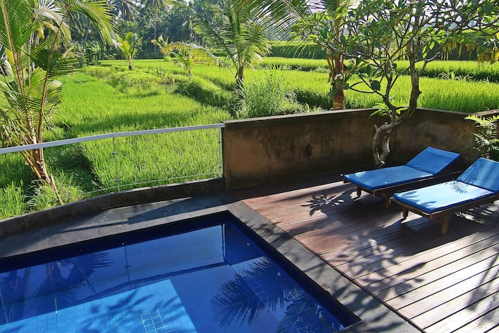 One Bedroom Ricefields View Villa Ubud #3