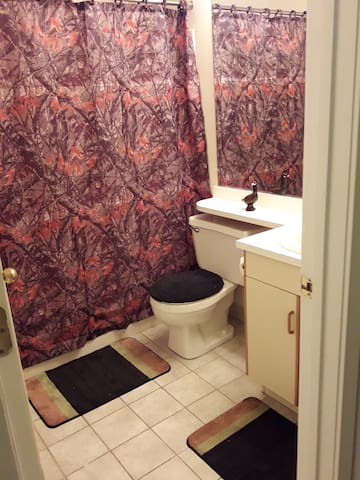 Nice 1 bed 1 bath available to rent