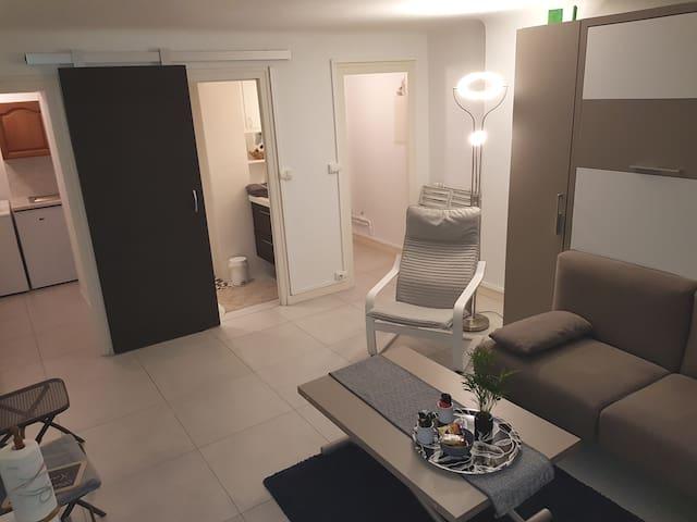 Vue d'ensemble du logement  Au centre salle de bain avec porte coulissante .Sur la  gauche entrée de la kitchenette