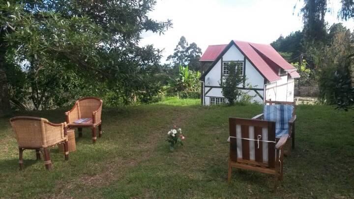 Msongwe Meadows