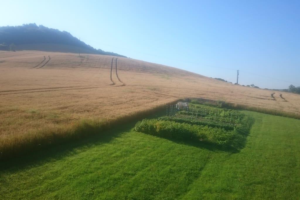 vue sur la campagne depuis la fenêtre