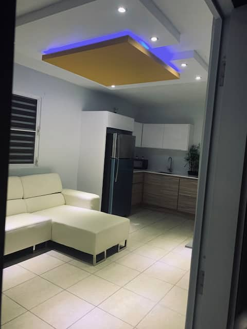 COMPLETE REMODELED APARTMENT