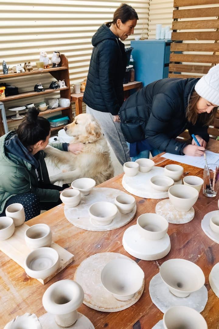 Best Studio hound ever