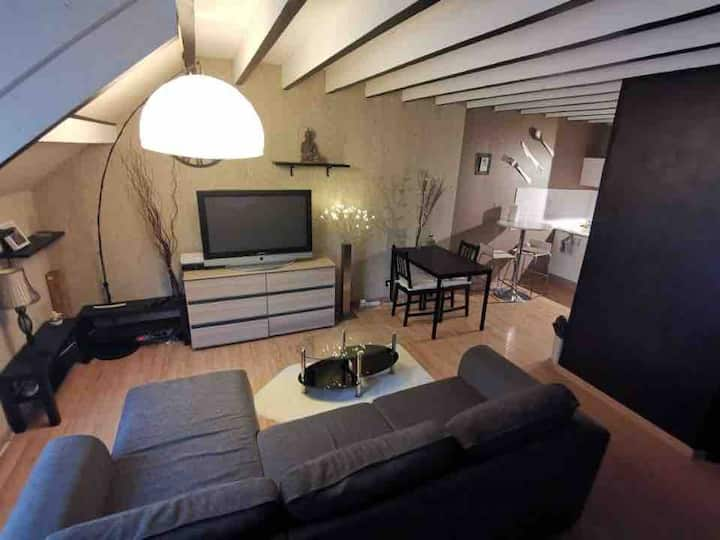Melun: loft near the Paris maxim for 4 people
