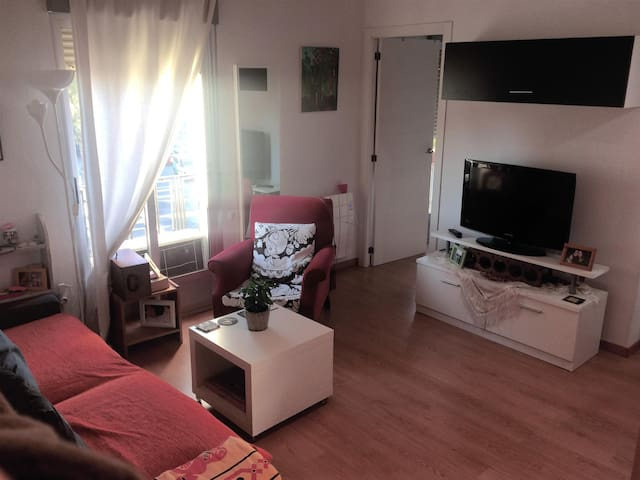 Bright cosy apartment in great location
