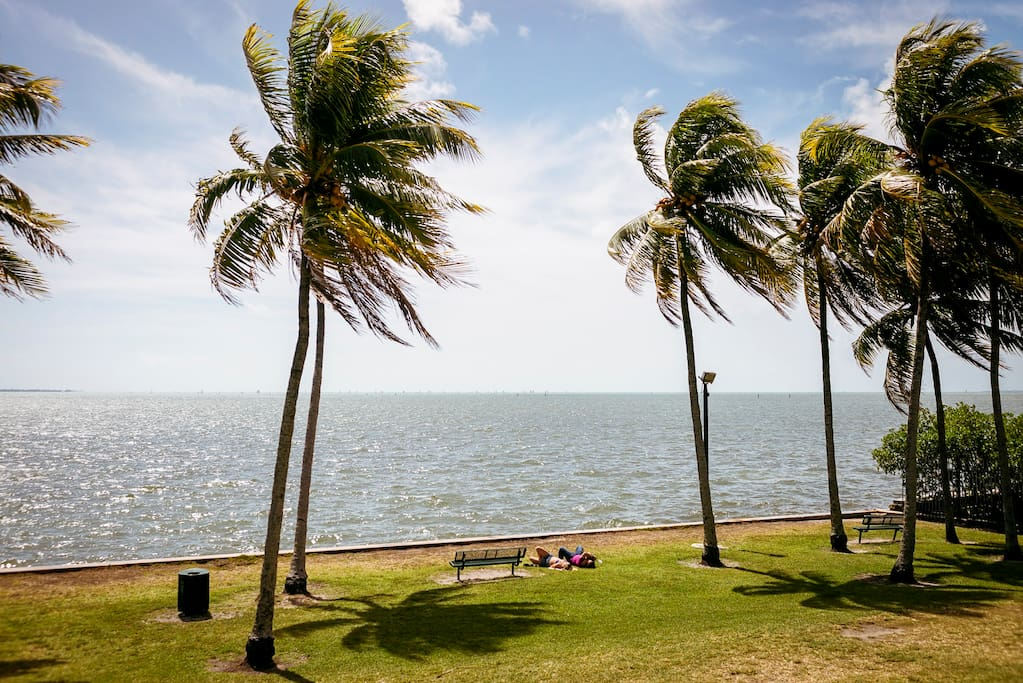 Photo of Coconut Grove in Coconut Grove