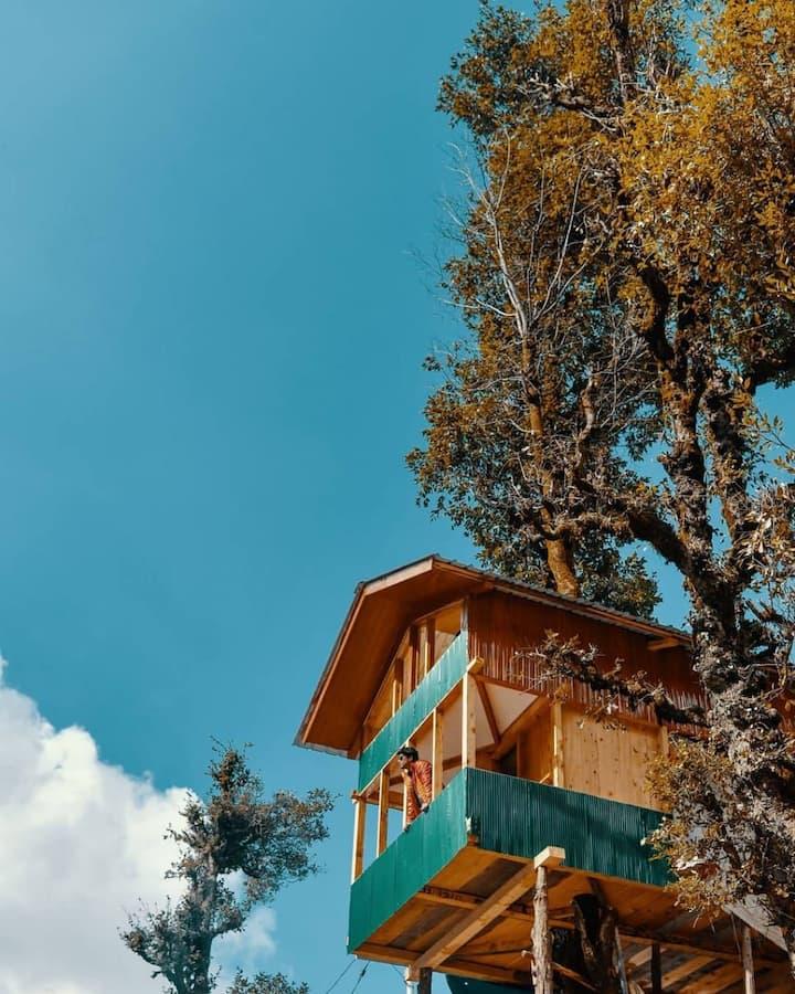 Tree house no society
