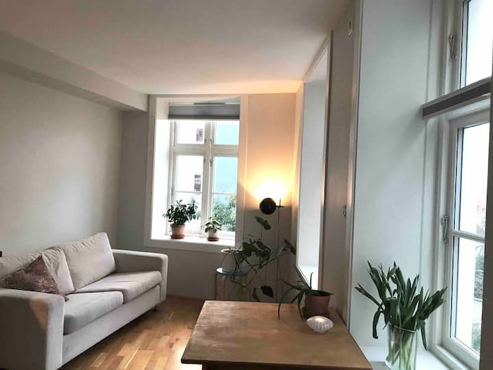 Light an inviting studio flat