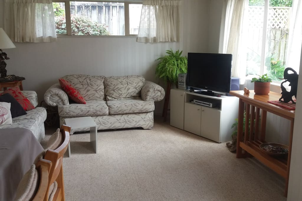 Living room and TV to share with host