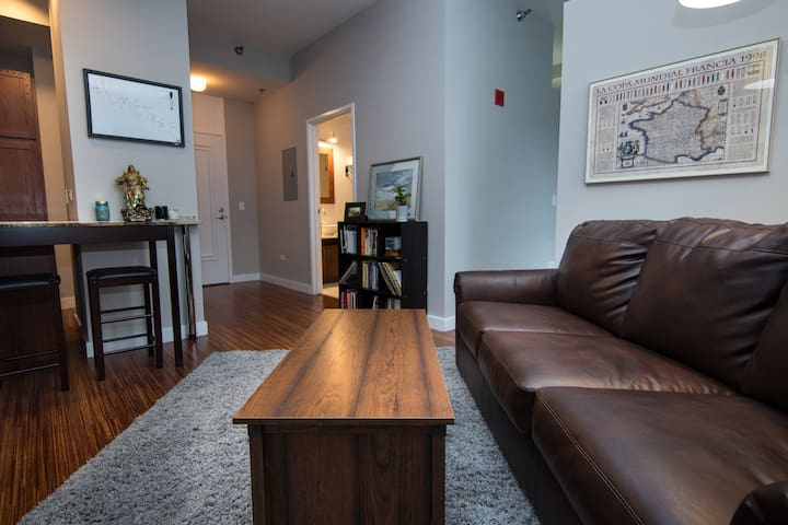 Modern Lux w/ HOT TUB, GYM, (SENSITIVE CONTENTS HIDDEN)ARK - Chicago - Apartemen