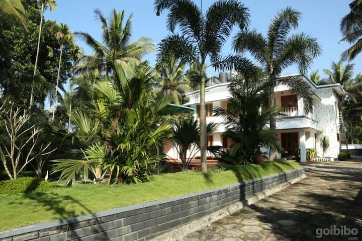 Wayanad Misty Dream villa