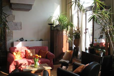 Appartement/loft en bord de Saône. - Lyon