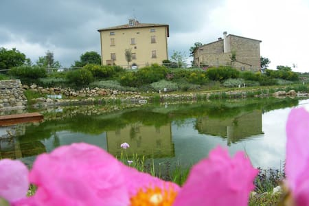 Farm House, Organic Swimming Pool,! - Castelnuovo Val di Cecina - Villa