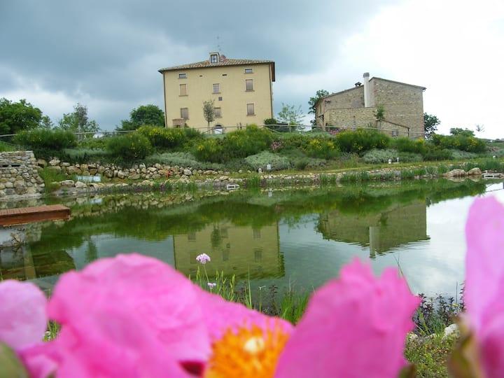 Farm House, Organic Swimming Pool, Tuscany!!