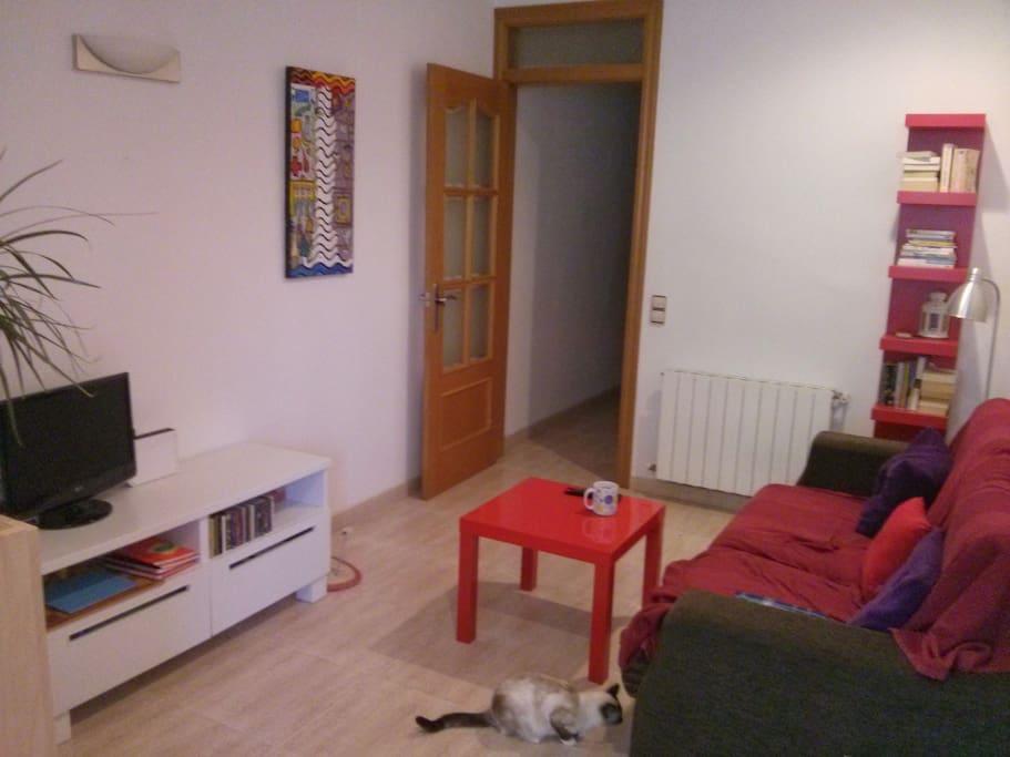 Private room in gracia barcelona apartamentos en - Habitacion para alquilar en barcelona ...
