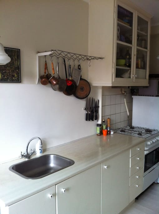 Charming kitchen with gasstove, oven, fridge etc.