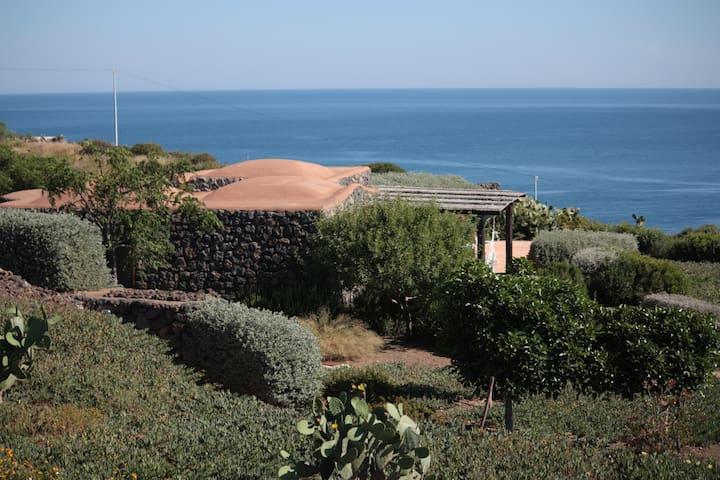 giardini fioriti di macchia mediterranea