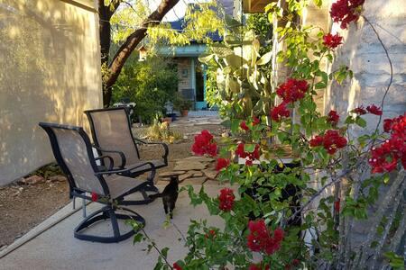 Desert Sanctuary - Tucson