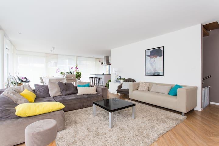 Hauts de Vevey, calme, cosy, charme - Corsier-sur-Vevey - House