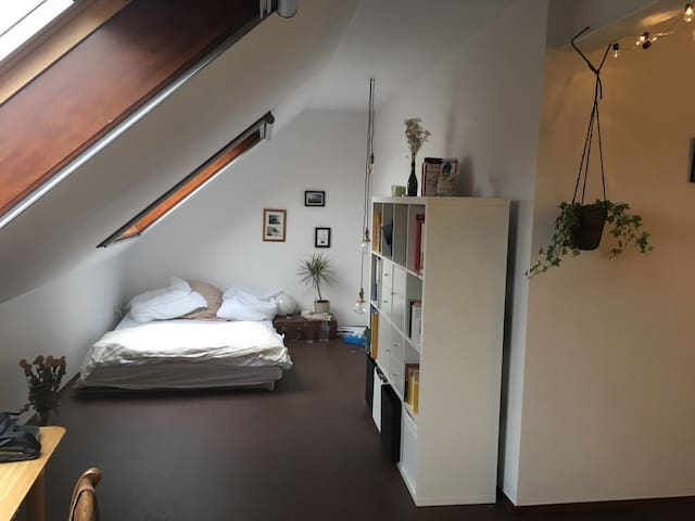Spacious 3 bedroom apartment with balcony - Gent - Apartment