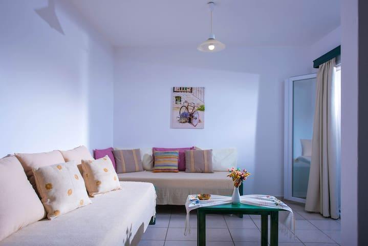 Spacious City Center Apartment near the sea