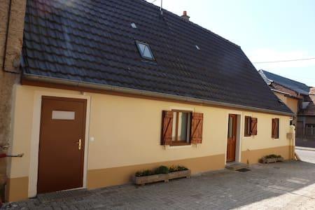 appartement F3 - Niederhergheim