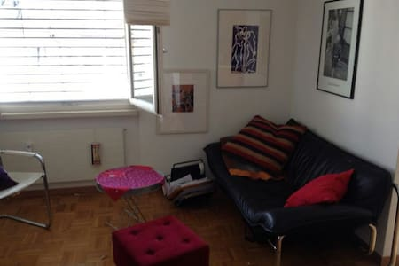 Best situated in Lucerne - Lucerne - Apartment