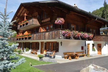 1-Zimmerwohnung in Chalet - Grindelwald - Apartment