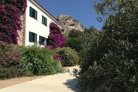 Appartamento in villa vacanze  - Sartène - Huoneisto